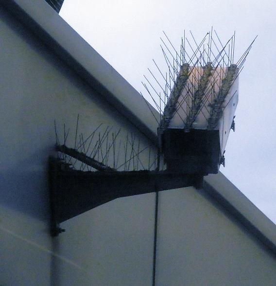 Covert Surveillance Art